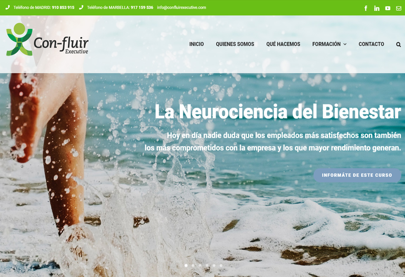 Con-fluir: La neurociencia del Bienestar